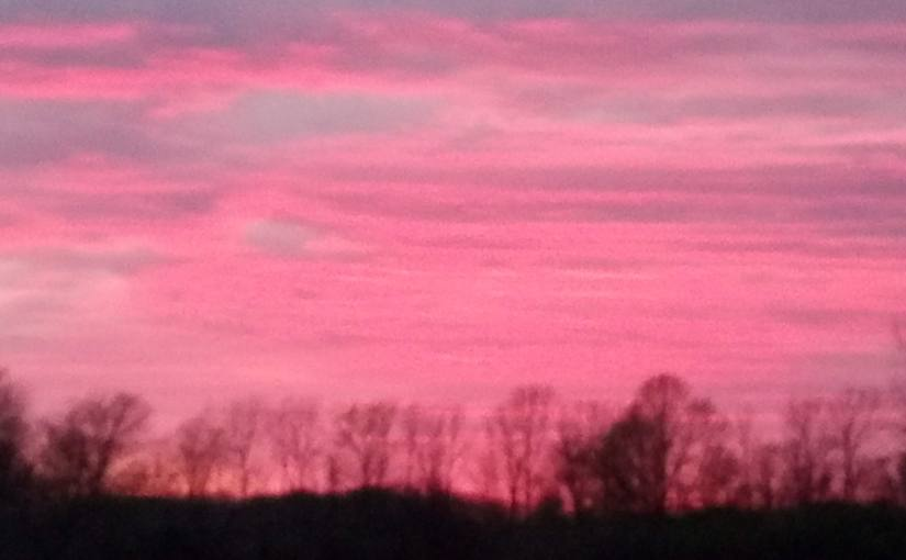 Blushing Twilight